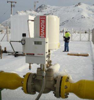 Un-dispositivo-de-medición-en-planta-300x320